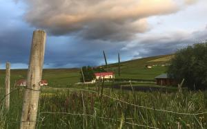 Rauðaskriða - View